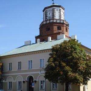 powiat wieluński