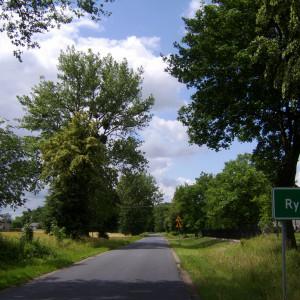 gmina Ryńsk, kujawsko-pomorskie
