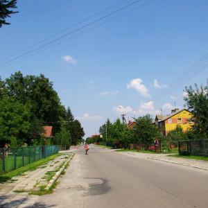 gmina Łomazy