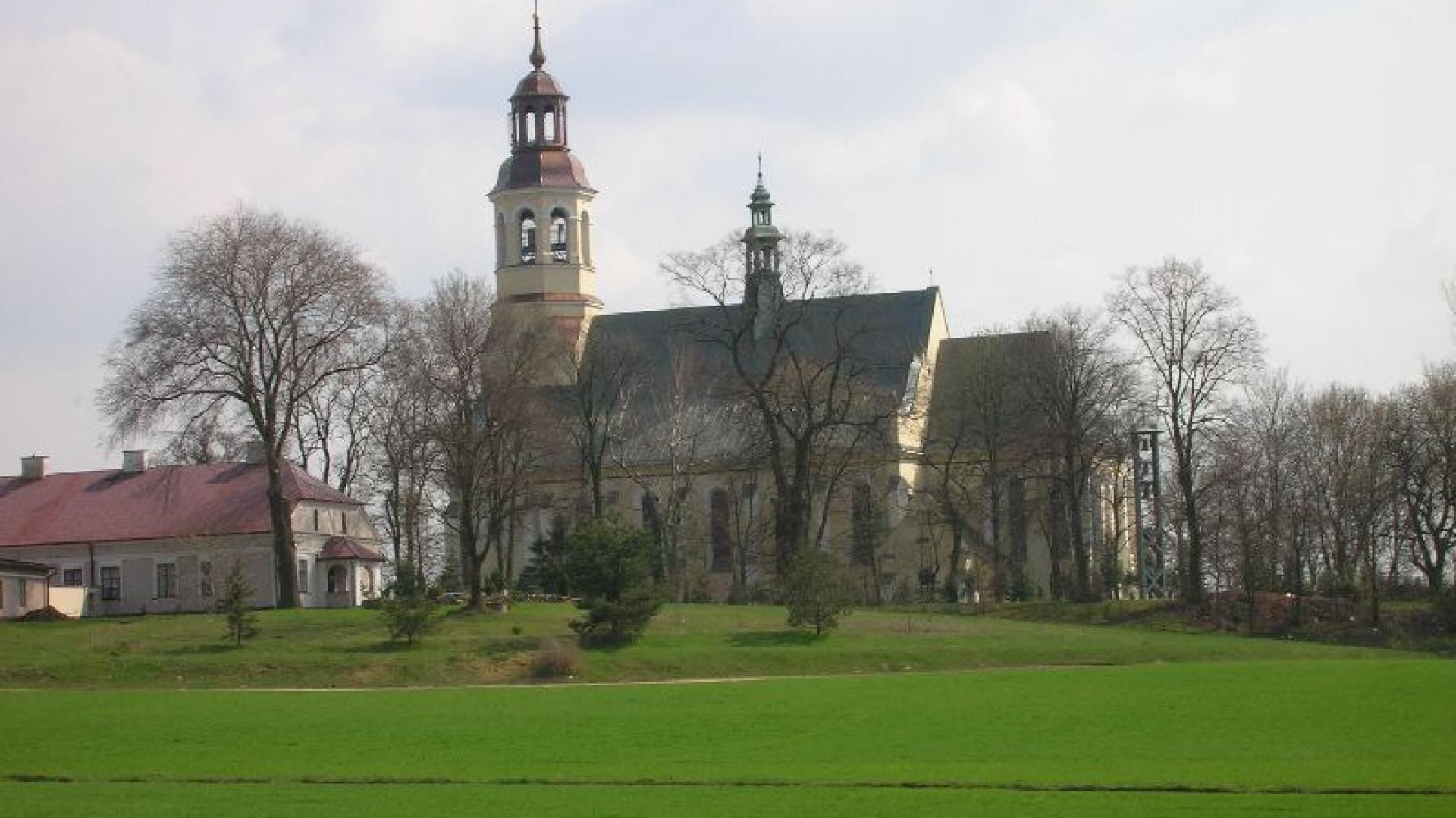 gmina Domaniewice