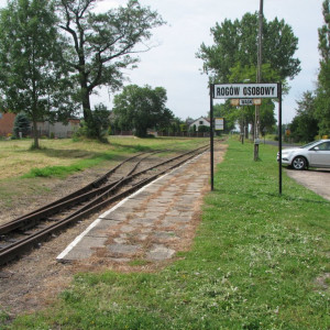gmina Rogów