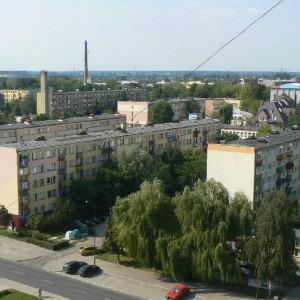 powiat bełchatowski