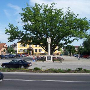 gmina Łapanów, małopolskie