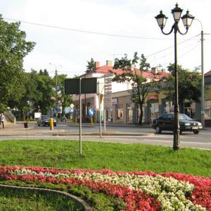gmina Sokołów Podlaski