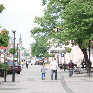 powiat radomski