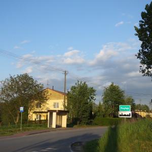 gmina Przyłęk