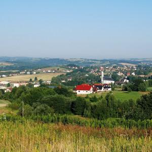 gmina Skołyszyn, podkarpackie