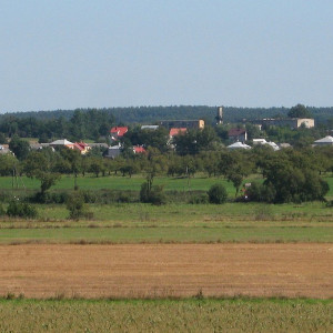 gmina Grabowo