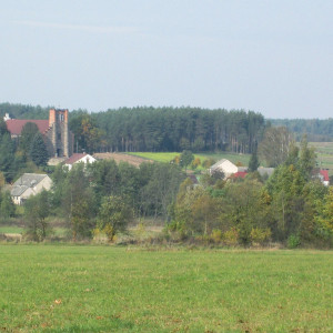 gmina Przytuły