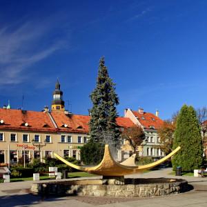 powiat wodzisławski, śląskie