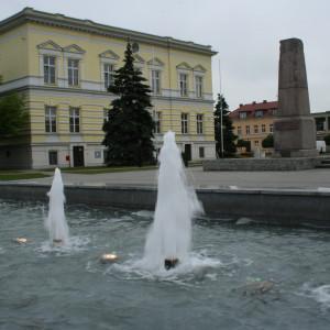 powiat nowotomyski, wielkopolskie