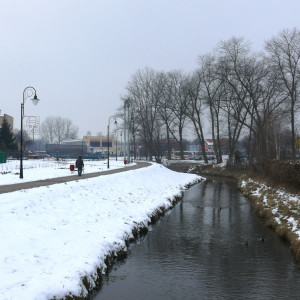 gmina Lipno, wielkopolskie