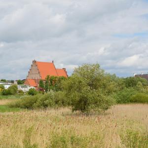 powiat kolski, wielkopolskie