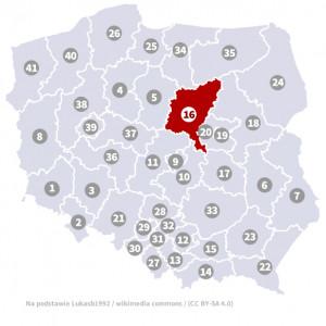 Okręg nr 16 (Płock) – wybory parlamentarne 2019 – głosowanie do sejmu
