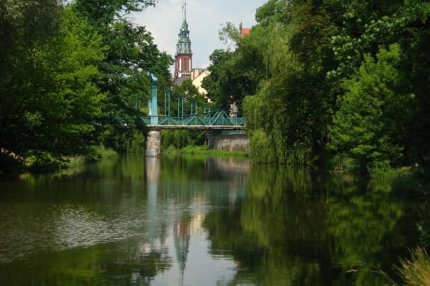 Okręg nr 21: Opole, Nysa, Brzeg, Kędzierzyn-Koźle