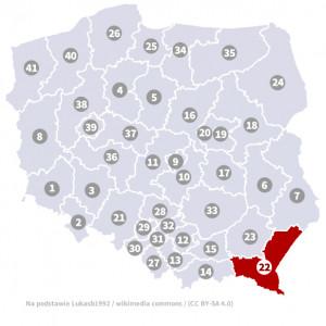 Okręg nr 22 (Krosno) – wybory parlamentarne 2019 – głosowanie do sejmu