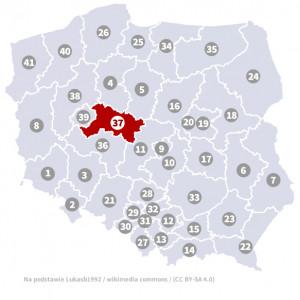 Okręg nr 37 (Konin) – wybory parlamentarne 2019 – głosowanie do sejmu