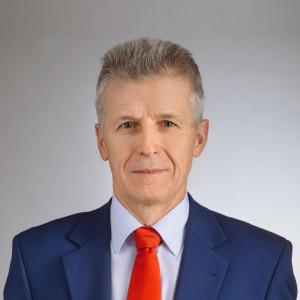 Waldemar Włodek