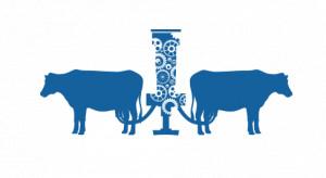 Nowoczesna produkcja mleka