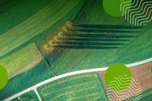 Narodowe Wyzwania w Rolnictwie